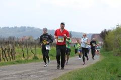 deutsche maratonu weinstrasse Obrazy Royalty Free