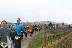 deutsche maratonu weinstrasse Zdjęcia Stock
