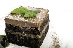 Deutscher Schokoladenkuchen Stockbild