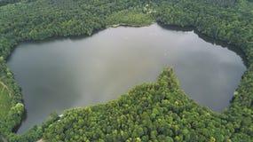 Deutscher See im Wald lizenzfreies stockfoto