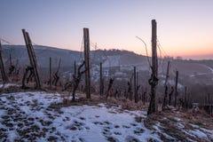 Deutscher Weinberg im Winter mit Schnee Stockbilder