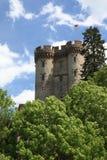 Deutsches Schloss mit Markierungsfahne lizenzfreies stockbild