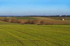 Deutschland, Bayern Frühlingsfelder Stockfotos