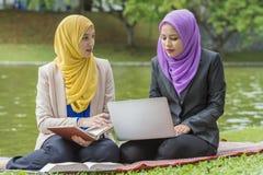 Deux étudiants universitaires ayant des idées de discussion et de changement tout en se reposant dans le parc Photographie stock