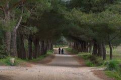 Deux aînés et leur chien sur le chemin Image libre de droits