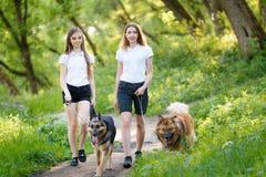 Deux adolescentes marchant avec ses chiens en parc Images libres de droits
