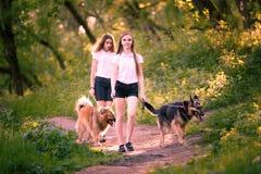 Deux adolescentes marchant avec ses chiens en parc Image libre de droits