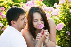 Deux amants dans la roseraie Photographie stock libre de droits