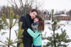 Deux amants marchent en parc d'hiver près des pins Image stock