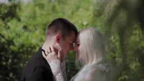 Deux amants s'asseyent sous un arbre par temps ensoleillé regardent l'un l'autre et le sourire banque de vidéos