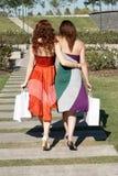 Deux amies allant sur l'avenue Photos libres de droits