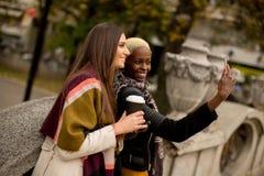 Deux amies assez multiraciales de jeunes au jour d'automne Images stock