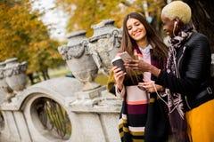 Deux amies assez multiraciales de jeunes au jour d'automne Photo libre de droits