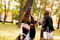Deux amies assez multiraciales de jeunes au jour d'automne Photos stock