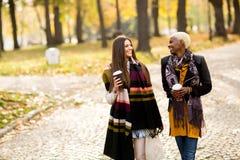 Deux amies assez multiraciales de jeunes au jour d'automne Image stock