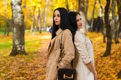Deux amies attirantes en parc d'automne Photos stock
