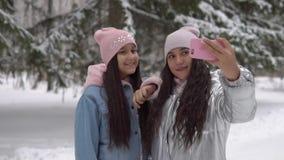 Deux amies avec une bonne humeur faire le selfie utilisant un smartphone tout en se tenant dans le mouvement lent HD de forêt d'h clips vidéos