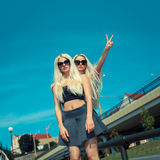 Deux amies blondes gaies Photo libre de droits