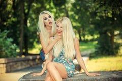 Deux amies blondes gaies Photo libre de droits