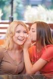 Deux amies communiquant en café Images stock