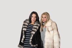 Deux amies dans la promenade courte de manteaux de fourrure Photographie stock libre de droits