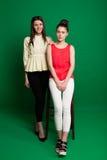 Deux amies de brune posant sur le fond vert Photographie stock libre de droits
