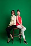 Deux amies de brune posant sur le fond vert Images stock