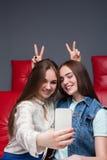 Deux amies drôles fait le selfie sur l'appareil-photo Photo libre de droits