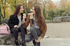 Deux amies essayent de réchauffer avec une boisson chaude dans l'extérieur Image stock