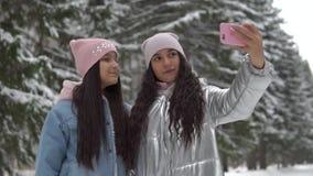Deux amies font le selfie utilisant un smartphone tout en se tenant dans un mouvement lent de forêt d'hiver banque de vidéos