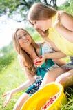 Deux amies heureuses de jeunes femmes à la ferme recueillant la fraise Images stock