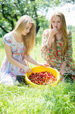 Deux amies heureuses de jeunes femmes à la ferme recueillant la fraise Photographie stock