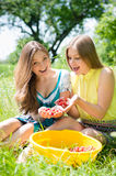Deux amies heureuses de jeunes femmes de sourire à la ferme Image libre de droits