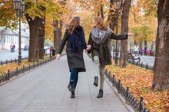 Deux amies marchant en parc d'automne Photographie stock