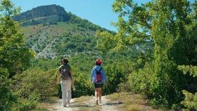 Deux amies marchent le long du chemin et montent le plateau de montagne clips vidéos