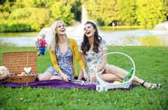 Deux amies riant pendant le pique-nique Images stock