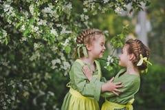 Deux amis étreignant à l'arrière-plan d'un jardin de floraison 8344 Photo stock