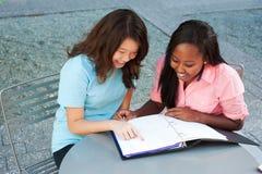 Deux amis étudiant ensemble Images stock