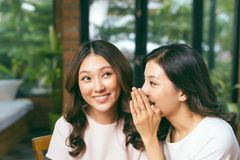 Deux amis asiatiques de femmes causant et bavardant Photos stock