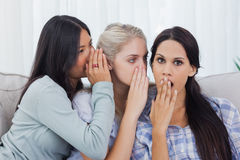 Deux amis chuchotant le secret à la brune choquée Photo libre de droits