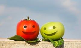 Deux amis colorés de tometo Photo libre de droits