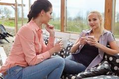 Deux amis de femmes parlant tenant des tasses de café Photographie stock libre de droits