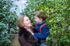 Deux amis de frères de garçons ayant l'amusement dans la serre chaude jardin d'hiver d'azalée enfants et famille Photo stock