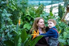Deux amis de frères de garçons ayant l'amusement dans la serre chaude jardin d'hiver d'azalée enfants et famille Photo libre de droits