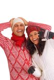 Deux amis de l'hiver Photos stock