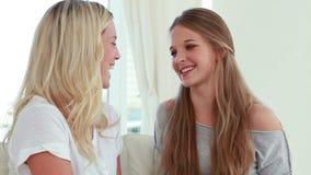 Deux amis de sourire parlant entre eux banque de vidéos