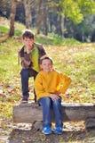 Deux amis en nature Images stock