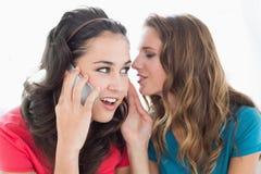Deux amis féminins à l'aide du téléphone portable Image libre de droits