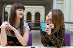 Deux amis féminins Images libres de droits