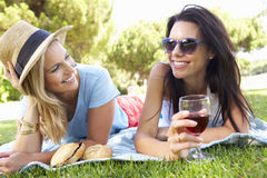 Deux amis féminins appréciant le pique-nique ensemble Image libre de droits
